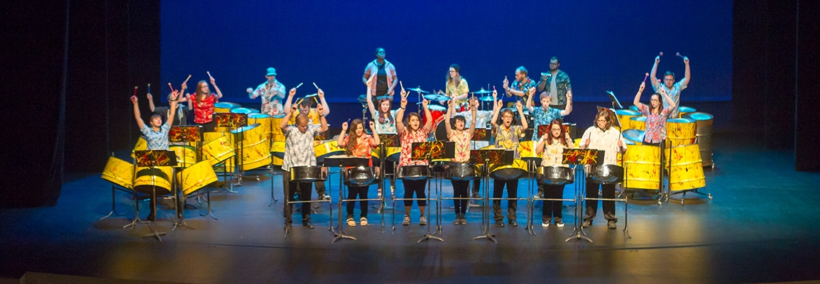 A Steely Pan Steel Band concert (pre-COVID).